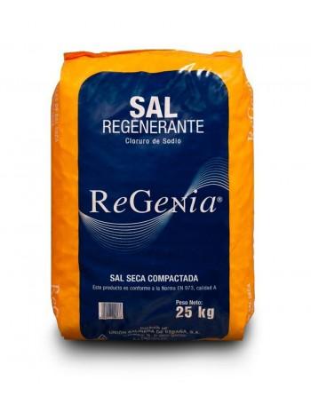 SAL PASTILLA DESCALSIFICAR REGENIA 25KG