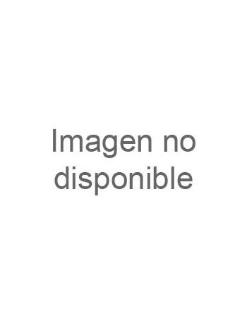 DESENGRASANTE CARROCERIAS A 10LT
